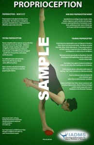 Sample proprioception poster from IADMS